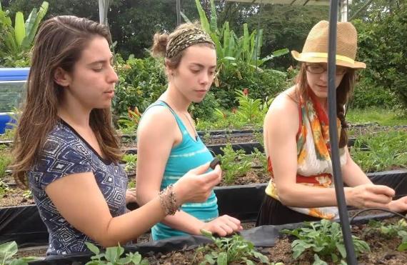 Water Studies internship in Costa Rica