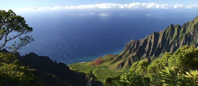 From NMC to Hawaii: An Interview with Dr. Maggie Sporck