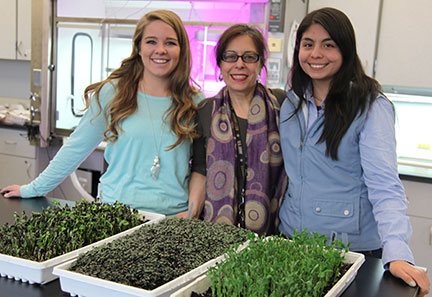 From left, Taylor West, Constanza Hazelwood and Karla Vega with greens grown in their vertical agriculture project.